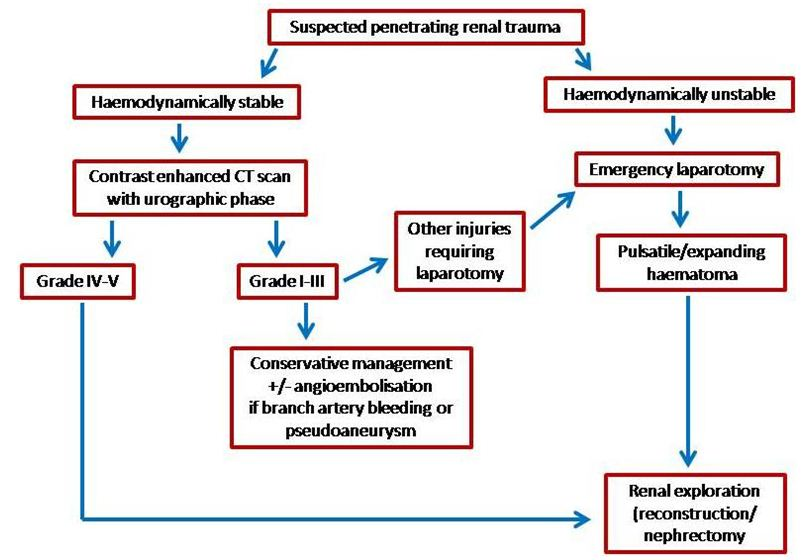 Current Management Of Renal Trauma