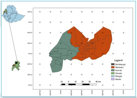 Predicting Population Status of Gum and Resin Bearing Plant Species from Size Distributions in Benishangul-Gumuz Regional State, Ethiopia: Inferences for Their Sustainable Management